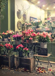 Flower Shop by AliaChek