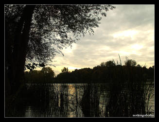 An evening at the lake by nothingofvalue