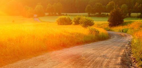 Long way home by Buszujacy-w-zbozu