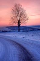 Winter morning by Buszujacy-w-zbozu