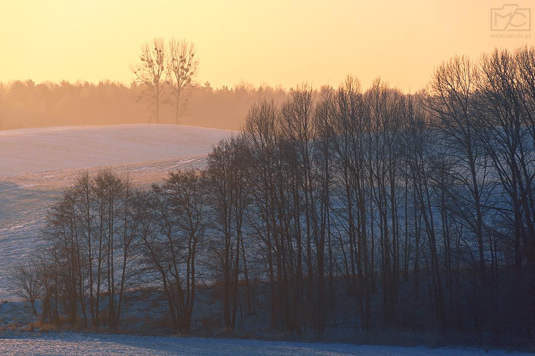 Frosty Morning II by Buszujacy-w-zbozu