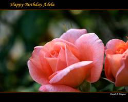 Happy Birthday Adela by David-A-Wagner