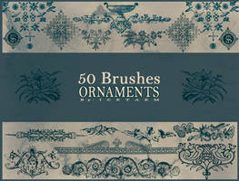 Ornaments Brushes III by Icetaem