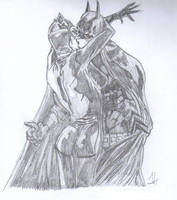 Catwoman and Batman by Skellington-at-heart