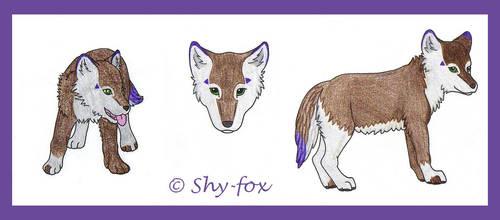 pup by shy-fox