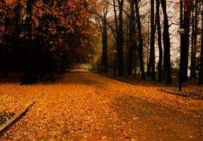 Cinnamon Walk by Kaltenbrunner