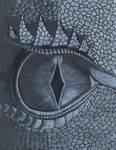 Dragon Eye by asubmarinewinter