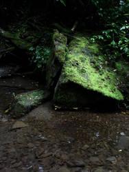 magia del bosco by Jerema
