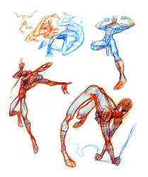 spider sketch s by sdrmutant