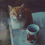 coffee-mate by beyondtheskies