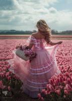 In tulip filds by chervona