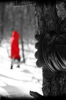 Red Riding Hood by tomcouture