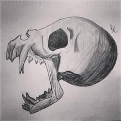 2013 Skull Drawing by un-hynged