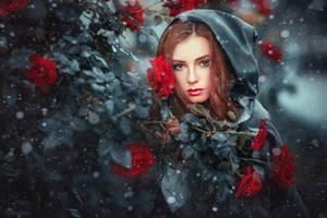 Winter fairytale by OlgaBoyko