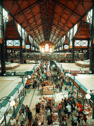 Budapest's Market Hall by ulyce