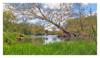 Relaxing River Side by padawan71