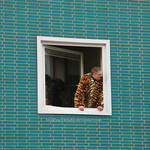 Tiger at the window by eschlehahn