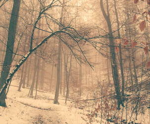 The place I long to be by eschlehahn