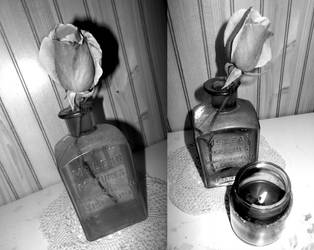 roses in vases bw 12/07/18 by TigerWaffle