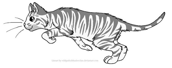 ThunderClan Tabby Lineart 2 by WildpathOfShadowClan