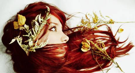 Autumn by Alephunky