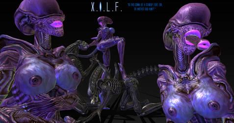 X.I.L.F. by Disembowell