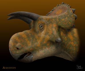 Avaceratops. by Frank-Lode