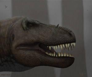 AMNH 5027. T.rex. by Frank-Lode