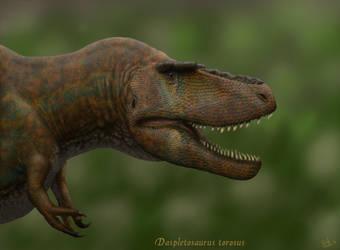 Daspletosaurus torosus. by Frank-Lode