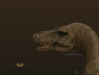 Bob. by Frank-Lode