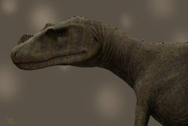 Juvenile Ceratosaurus. by Frank-Lode