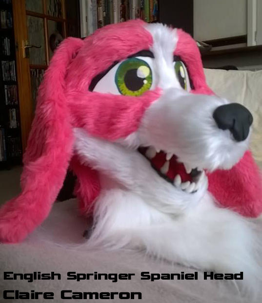 English Springer Spaniel Head by Vixen-T-Fox