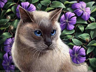 tis a cat by tracyjb