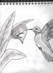 Hummingbird by shadowfox94