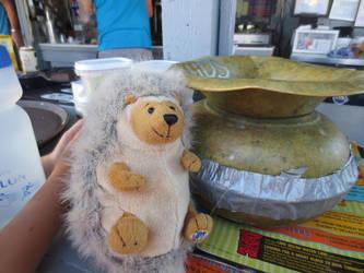 Hedgehog and a Tip Jar by SugarAndSpiceKat