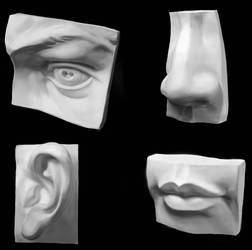 Face Parts Practice by tlst9999
