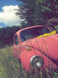 old beatle car II. by FruitByTheRandom