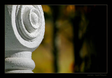 Fall Caught My Eye by imaginee