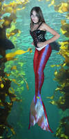 Red III Mermaid by sirenabonita