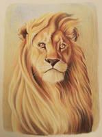 Majestic Lion by ZiskaJa