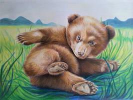 bear baby by ZiskaJa