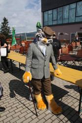 New Pallas' Cat Fursuit by Runoratsu