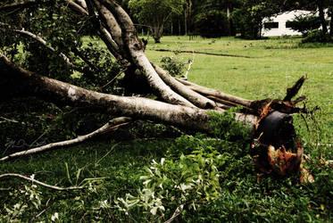 Cyclone Yasi I by Jacks-Eating-Santa