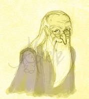 Wizard Photo Dumbledore by Murielle