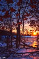 Frozen by JustinDeRosa