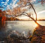 Lakeside by JustinDeRosa