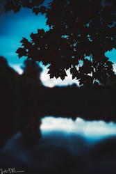 fading light by JustinDeRosa