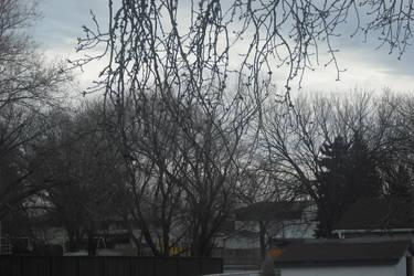 Grey Sky by KyloMutt