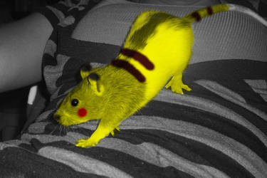 Heriome the pika rat by KyloMutt