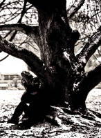 Lost Soul by EmanuRenton